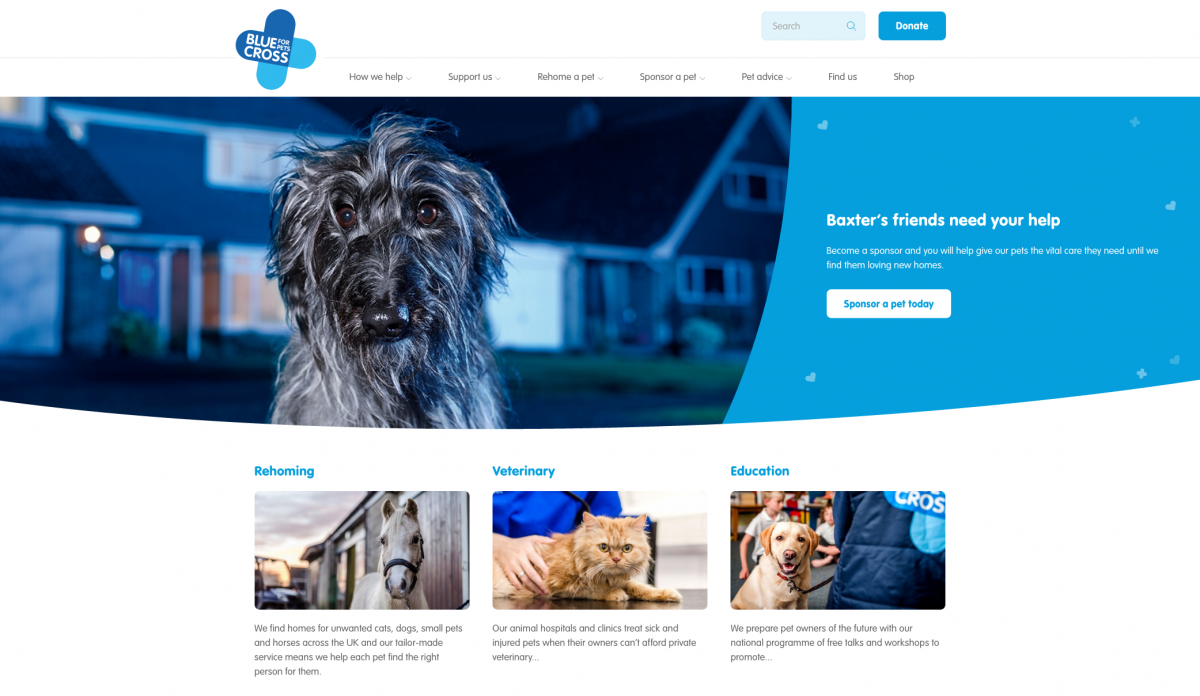Blue Cross Homepage