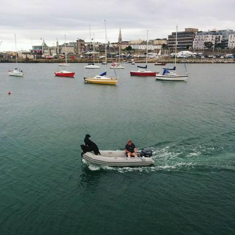 #boatdogs