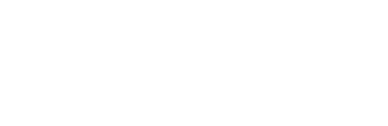 Greener Journeys Website Case Study